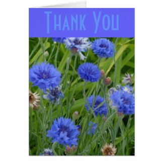 Cornflower Blues Card