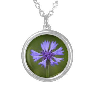 Cornflower (Centaurea cyanus) Silver Plated Necklace