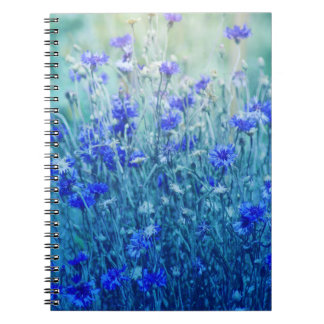 Cornflowers Notebooks