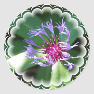 Cornflowers Sticker