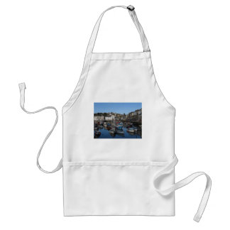 Cornwall, the port of Mevagissey Standard Apron