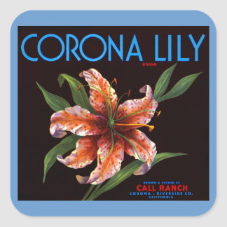 Corona Lily Square Sticker