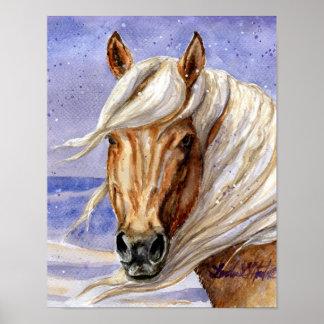 Corona of Sand Wash Basin HMA Colorado Poster