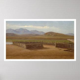 Corral, Rancho Santa Margarita (1162) Poster