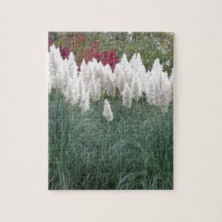 Cortaderia selloana known as pampas grass jigsaw puzzle