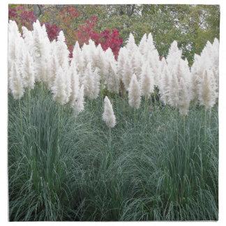 Cortaderia selloana known as pampas grass napkin