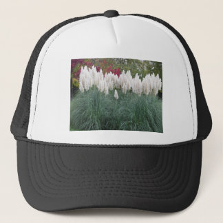 Cortaderia selloana known as pampas grass trucker hat