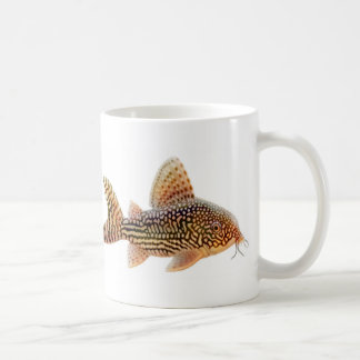 Corydoras Sterbai Mug
