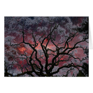 Cosmic Tree - Milky Way Center Card