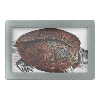 Cosmic turtle 1 belt buckles