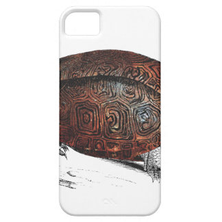 Cosmic turtle 1 case for the iPhone 5