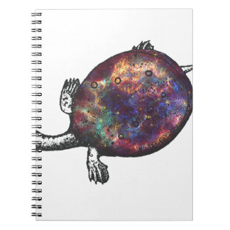 Cosmic turtle 3 notebook