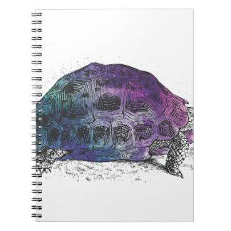 Cosmic turtle 4 notebook
