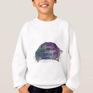 Cosmic turtle 4 sweatshirt