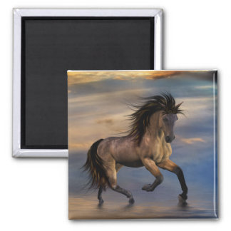 Cosmic .. wild stallion magnet