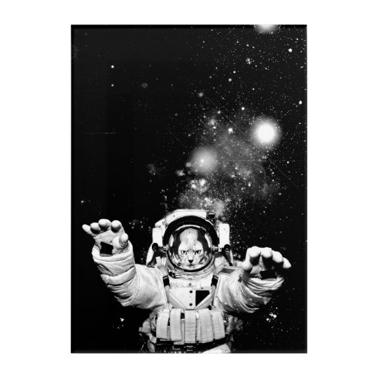 Cosmonaut Cat Acrylic Wall Art