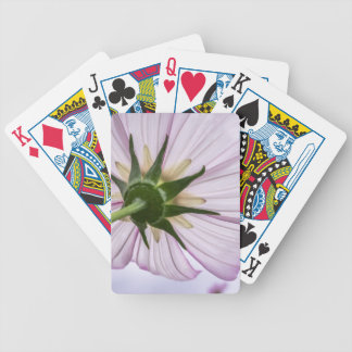 cosmos bicycle playing cards