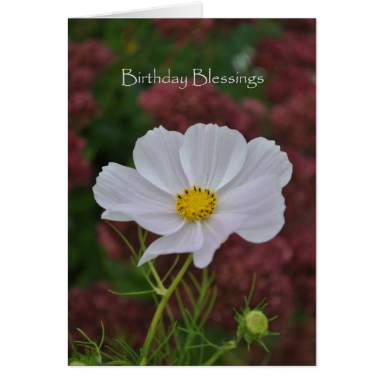 Cosmos Birthday Blessings Card