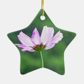 Cosmos Ceramic Star Ornament