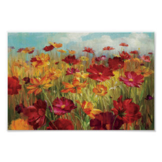 Cosmos in the Field Poster