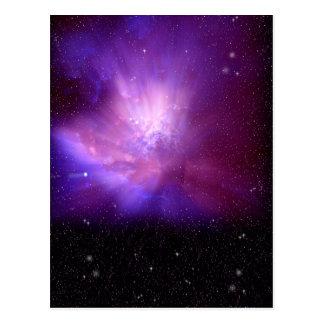 Cosmos Postcard