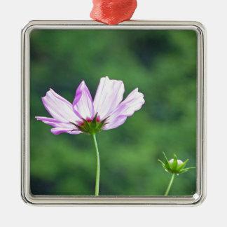 Cosmos Silver-Colored Square Ornament