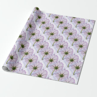 cosmos wrapping paper
