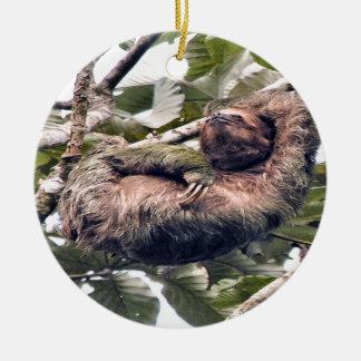 Cosra Rican sloth Ceramic Ornament