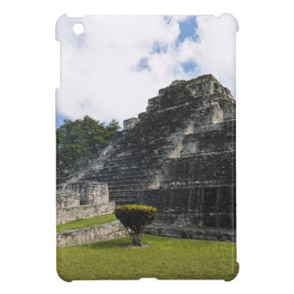 Costa Maya Chacchoben Mayan Ruins iPad Mini Case