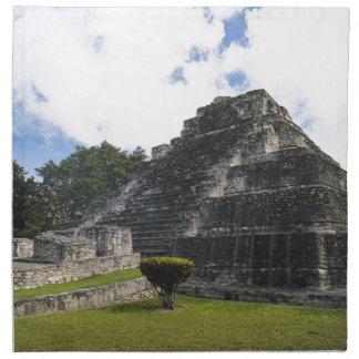 Costa Maya Chacchoben Mayan Ruins Napkin