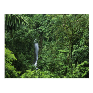 Costa Rica, Arenal Volcano area, Hanging Bridges Postcard