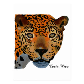 Costa Rica Jaguar Postcard