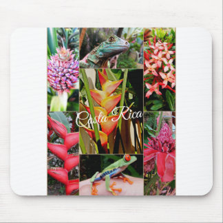 Costa Rica Travel Collection Mouse Pad