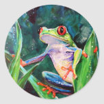 Costa Rica Tree Frog Classic Round Sticker