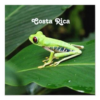 Costa Rica Tree Frog Invitation