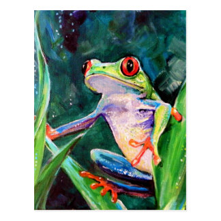 Costa Rica Tree Frog Postcard
