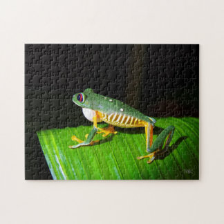 Costa Rican Red-eyed Tree Frog Puzzle