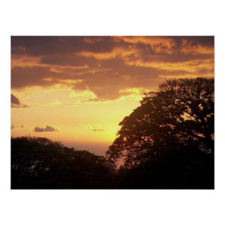 Costa Rican Sunset II Poster