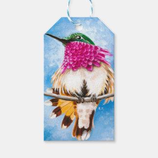 Costa's Hummingbird Gift Tags