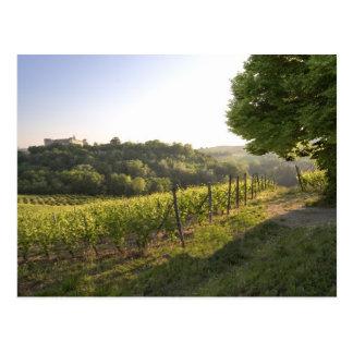 Costigliole d'Asti , Piedmont, Italy Postcard