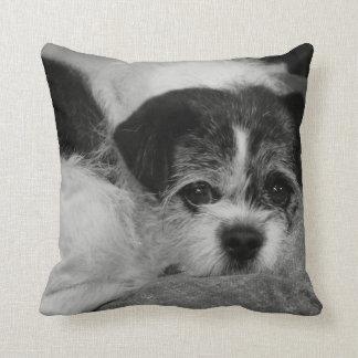 Costomizable Add Pet Photo Throw Pillow