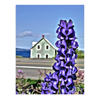 Cosy little house by the sea with a lupine flower customized letterhead