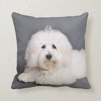 Coton de Tulear - Joci Throw Pillow