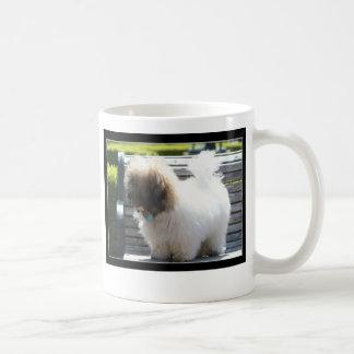 Coton de Tulear Puppy mug
