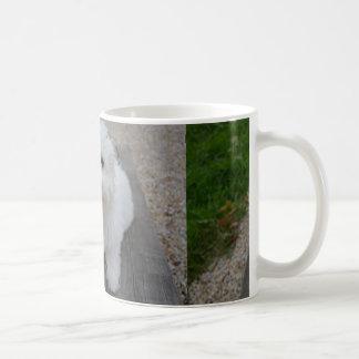 coton on bench coffee mug