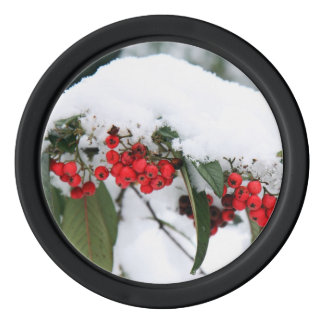 Cotoneaster Fruits with a Snow Hat Poker Chips