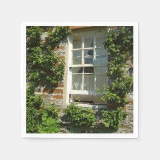 Cottage anglais I Serviettes En Papier