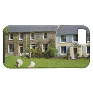 Cottages, Beddgelert, Gwynedd, Wales iPhone 5 Covers