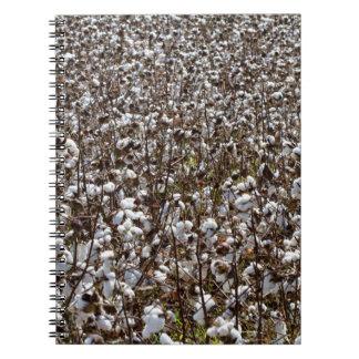 Cotton Crops Field Notebook