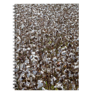 Cotton Crops Field Spiral Notebook